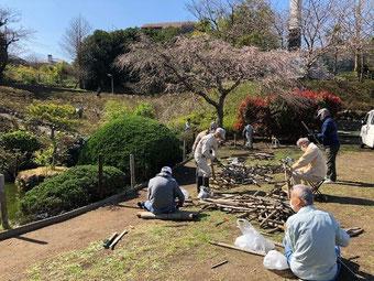 「葉山メダカの会」会報4月号/NO.178