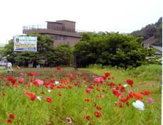 葉山・花と緑のまちづくりを進める会