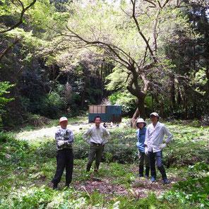 葉山ホタルの会